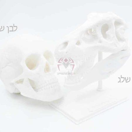 PLA לבן-שמנת-לבן-שלג